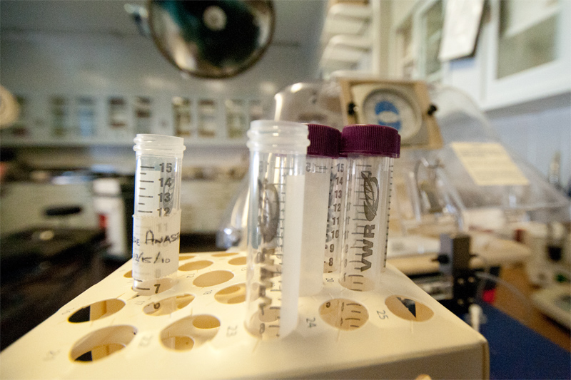A portable animal intensive care unit is seen in the background of test tubes marked with inflammatory markers for tumor research.The capabilities of the surgical team for clinical research are augmented by the proximity of the St. Luke's space to medical researchers as well as the Columbia facilities across the street