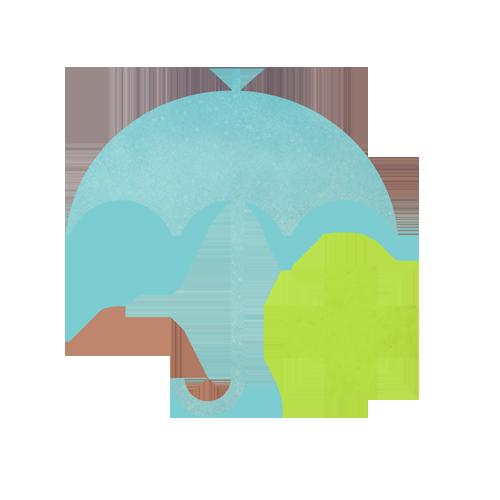 Cuestiones relativas al Seguro Médico y pago de la Cirugía