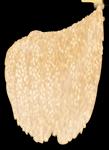 El epiplón como tejido adiposo que protege a los órganos abdominales